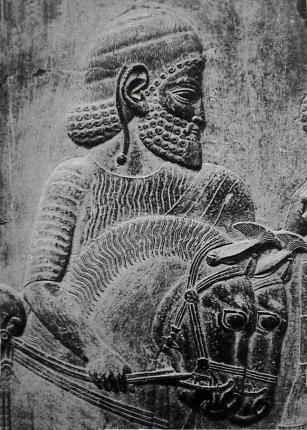 Souvenir_Kuda Tertua Kerajaan Iran ditemukan