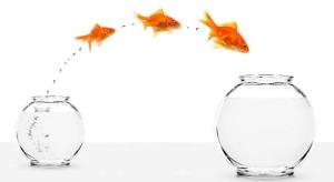 Tips_Jadi Pemimpin Sukses ditahun 2012_